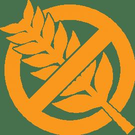 ¿Qué cuidados debe tener un alérgico al gluten?