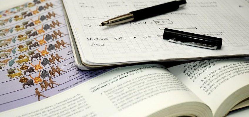 ¿Qué hacer para que el cerebro esté a pleno rendimiento en los exámenes?